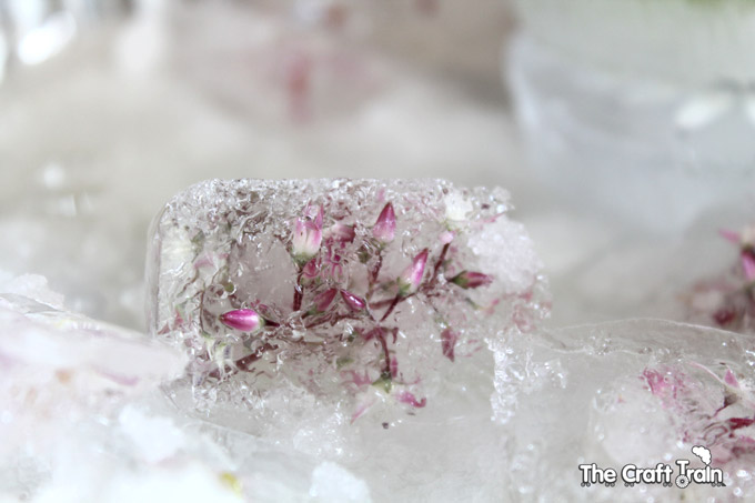 flower-ice-cubes7