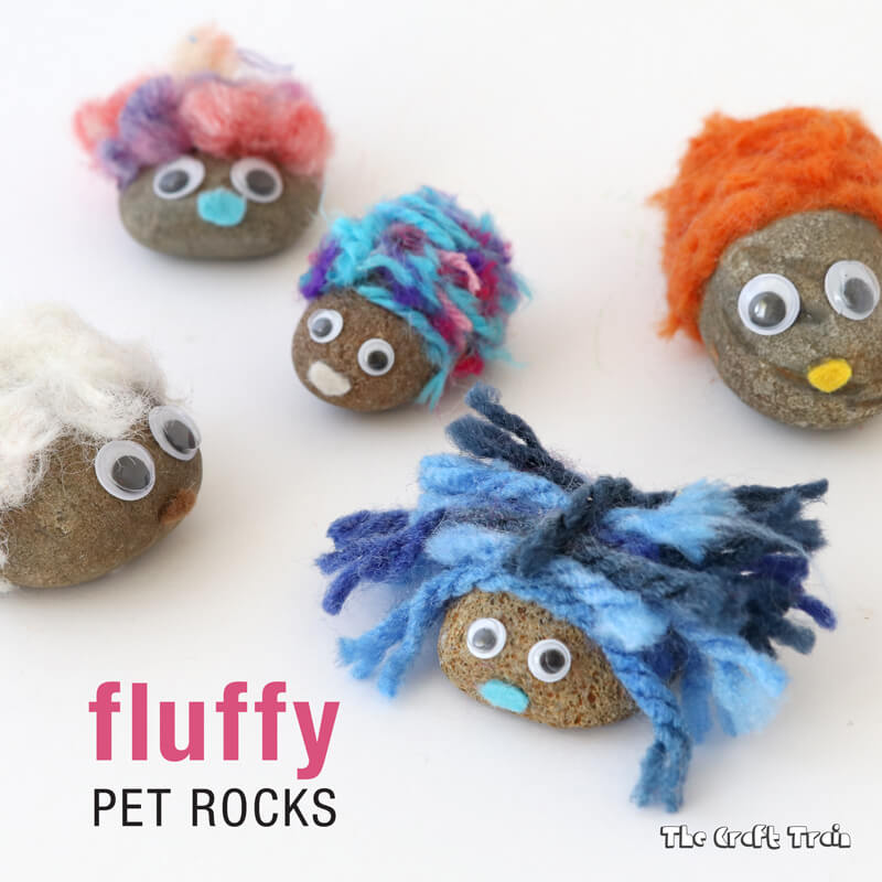 Fluffy Pet Rocks The Craft Train