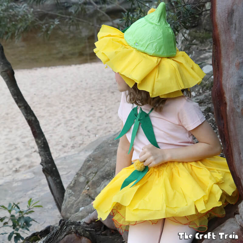 Easy gumnut baby costume from Snugglepot and Cuddlepie by May Gibbs
