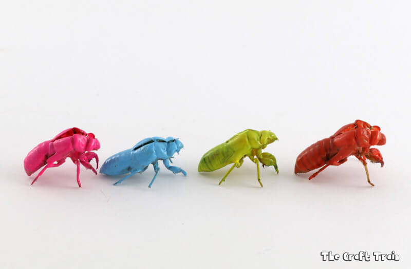 painted cicada shells in neon colours. A un nature craft idea for kids