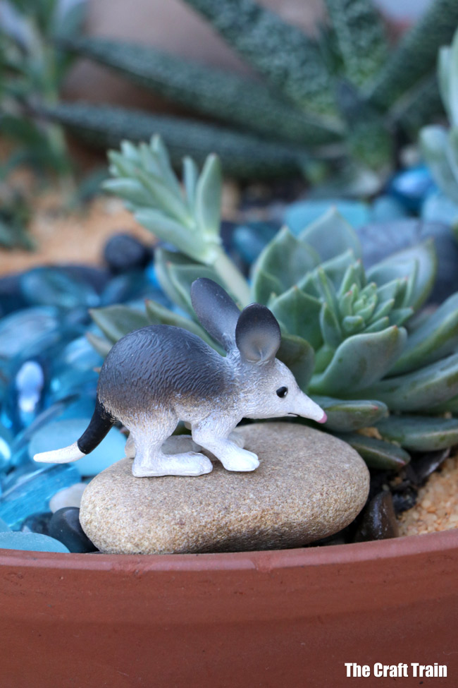 Bilby in our succulent garden with Australian animal theme. This is a fun gardening with kids project and makes a great small world for imaginary play or a handmade gift idea #succulents #succulentgarden #smallworld #gardeningwithkids #australiananimals #gardening #kidsactivities