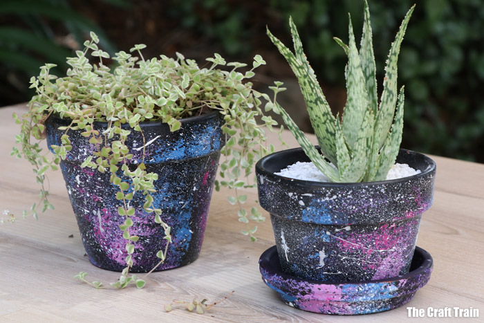 galaxy pots with succulent plants