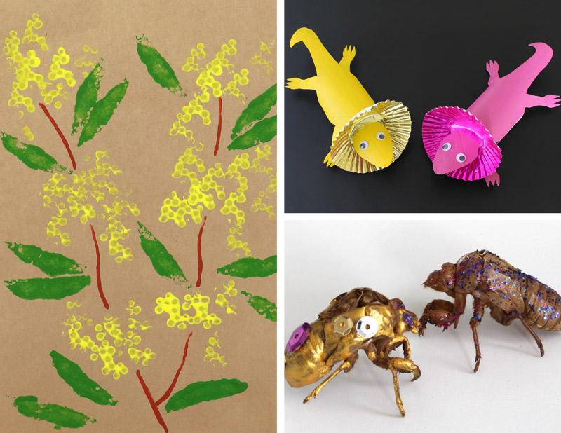 Wattle art, cardboard tube lizards and hand-painted cicada shells